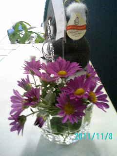 花をいただきました画像